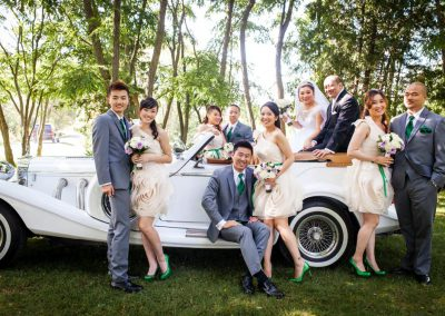 Bridal party Excalibur Phantom 6 | Stonefields Heritage Farm | Themotions Photography
