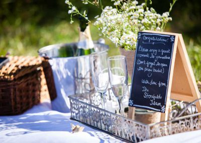 Wedding champagne picnic | Stonefields Heritage Farm | Themotions Photography