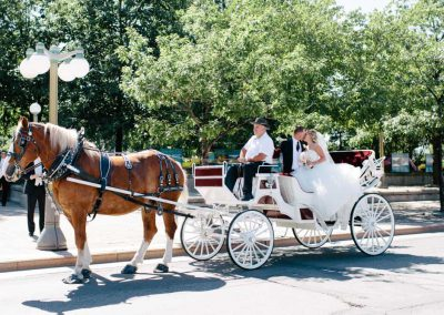 Horse and Carriage bride and groom Ottawa | Fairmont Chateau Laurier | Union Eleven Photographers